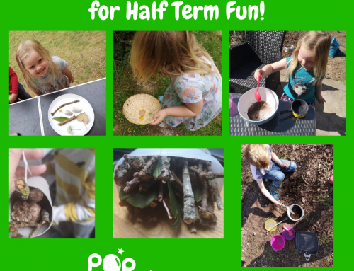 Outdoor Activity Ideas for Half Term Fun!
